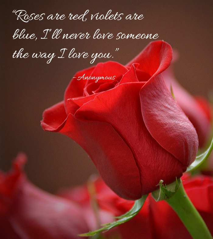 """Roses are red, violets are blue, I'll never love someone the way I love you."" – Anonymous quotation"