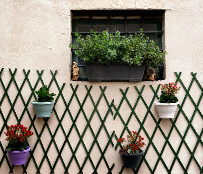 Vertical Gardens Living Walls Green Wall Planters