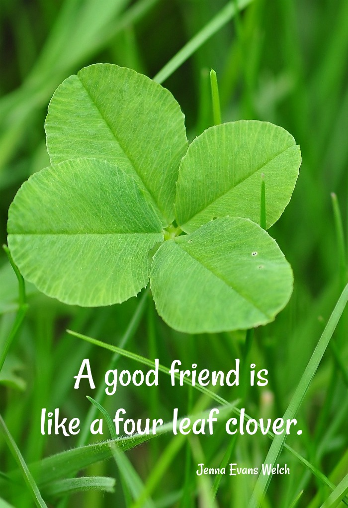 Jenna Evans Welch quote - A good friend is like a four leaf clover on a four leaf clover image.
