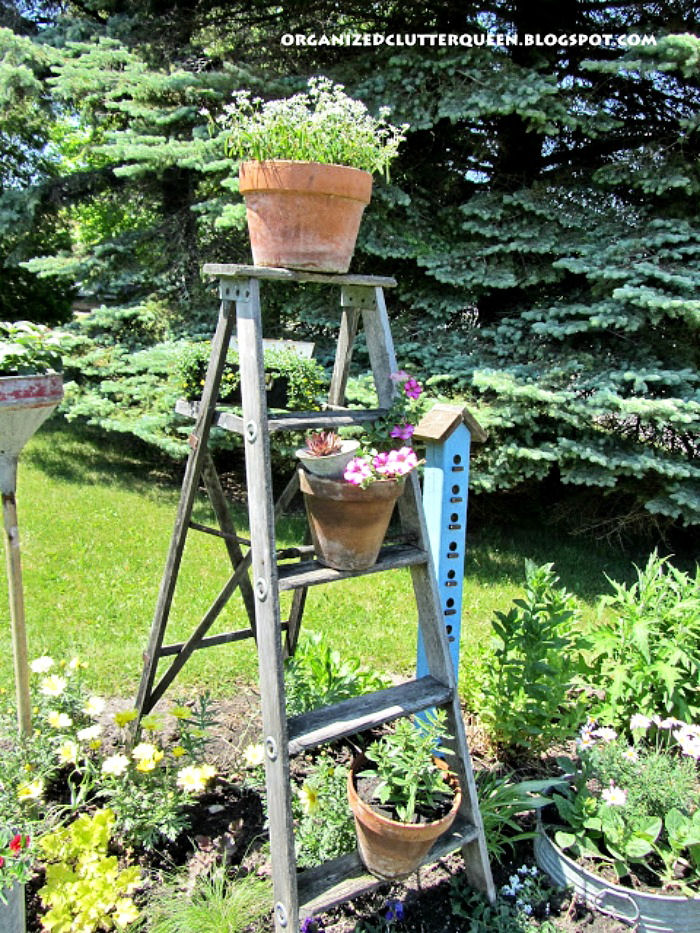 Stepladder planter