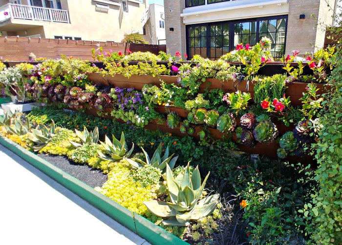 Venice Beach Canal barrier wall garden