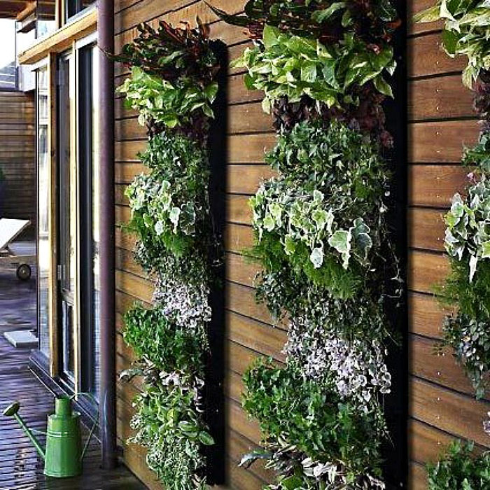 Wall Garden Strips