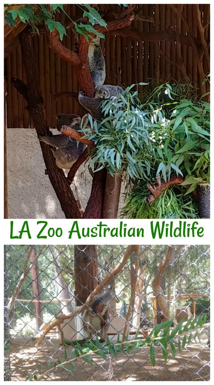 Australian wildlife at the LA Zoo