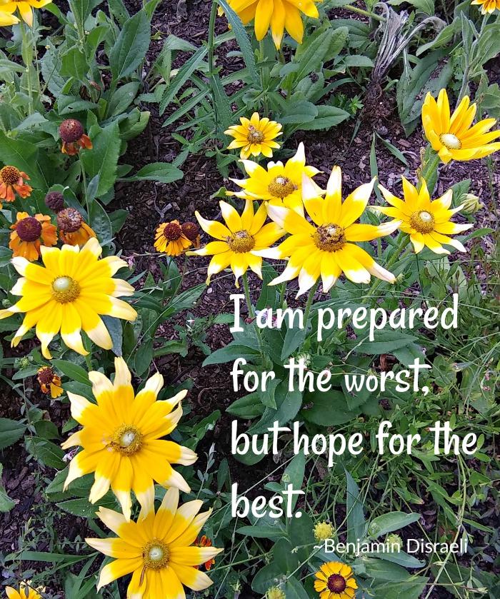 Benjamin Disraeli Hope Quote