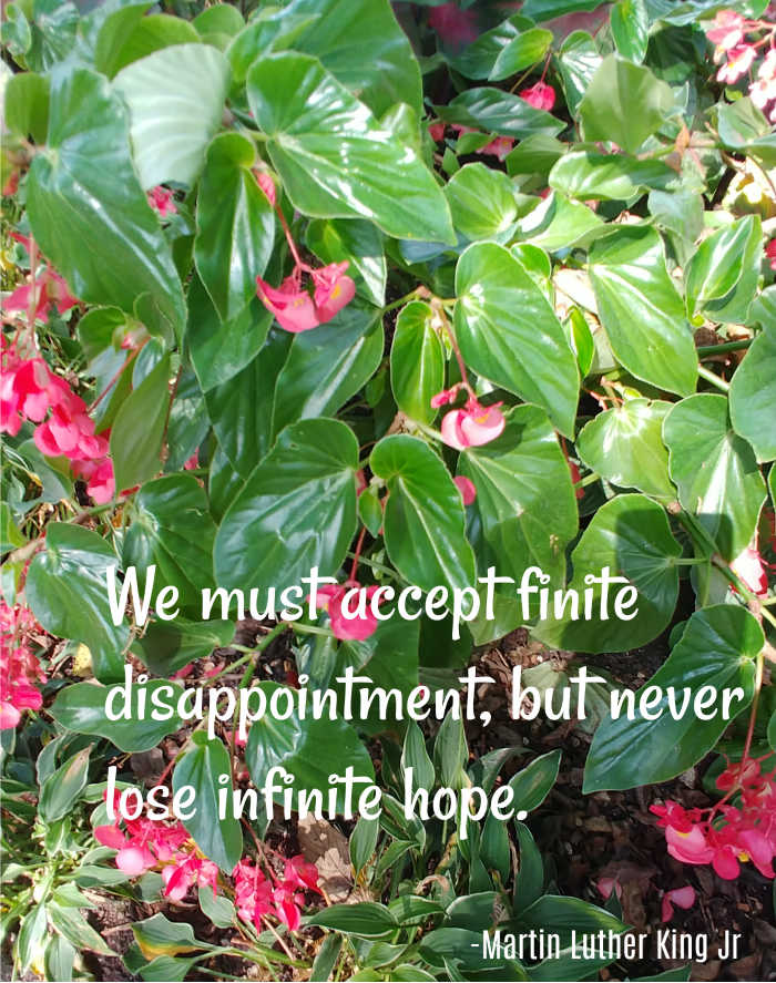Martin Luther Kind quote about hope.