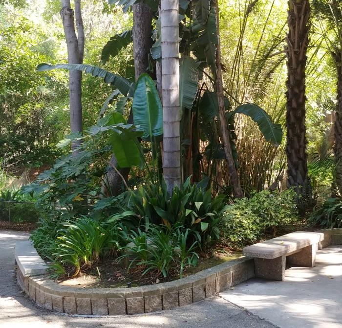 Shade and seat at the LA Botanical Gardens
