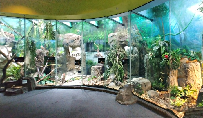 The Lair exhibit for amphibians ad reptiles