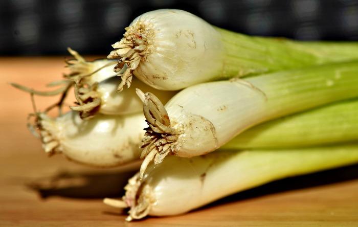 bulb of a spring onion