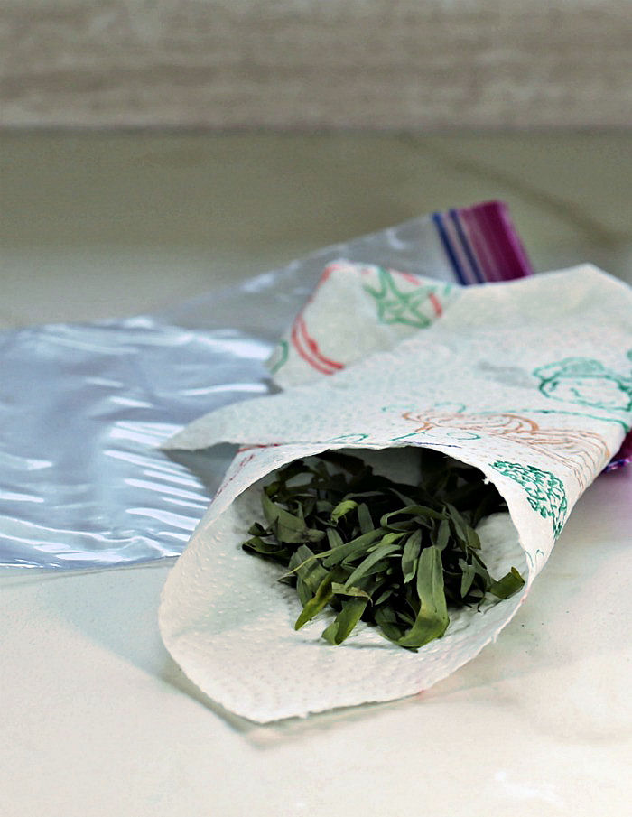 herbs wrapped in paper towels