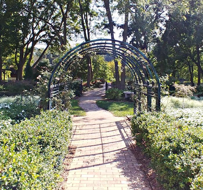 White garden arch in Springfield Botanical Gardens