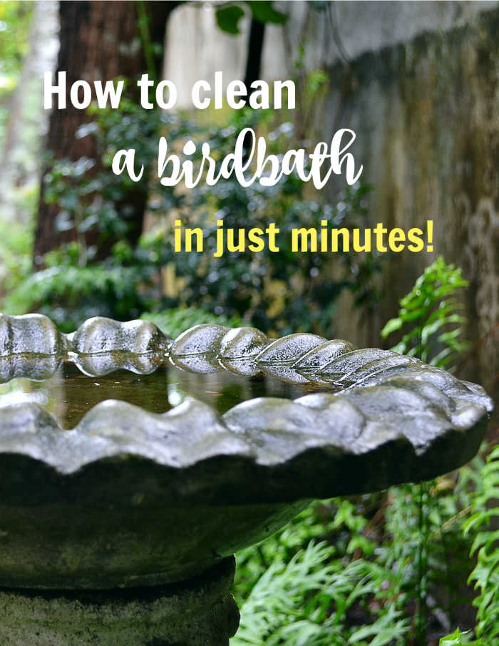 Clean birdbath with text reading How to clean a dirty bird bath in just minutes.