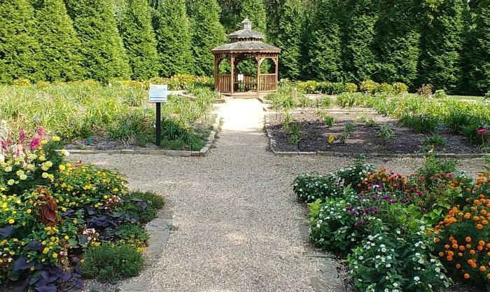 daylily garden with gazebo