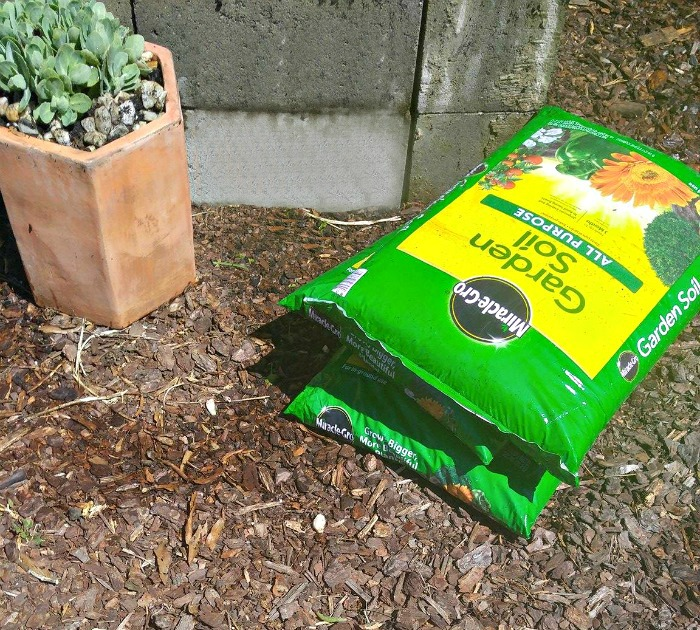 Miracle Gro Potting Soil and a concrete blocks planter