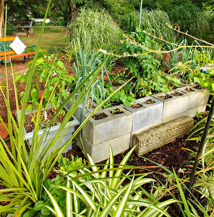 Vegetable;e garden planter made of concrete blocks