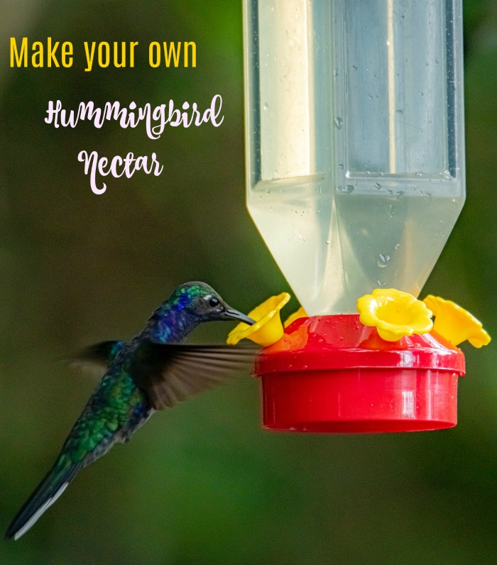Make your own hummingbird nectar for a fraction of the cost of retail.