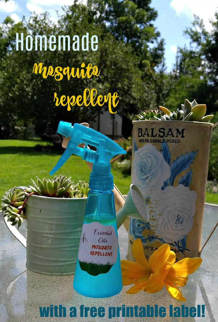 Homemade mosquito repellent and succulent planters
