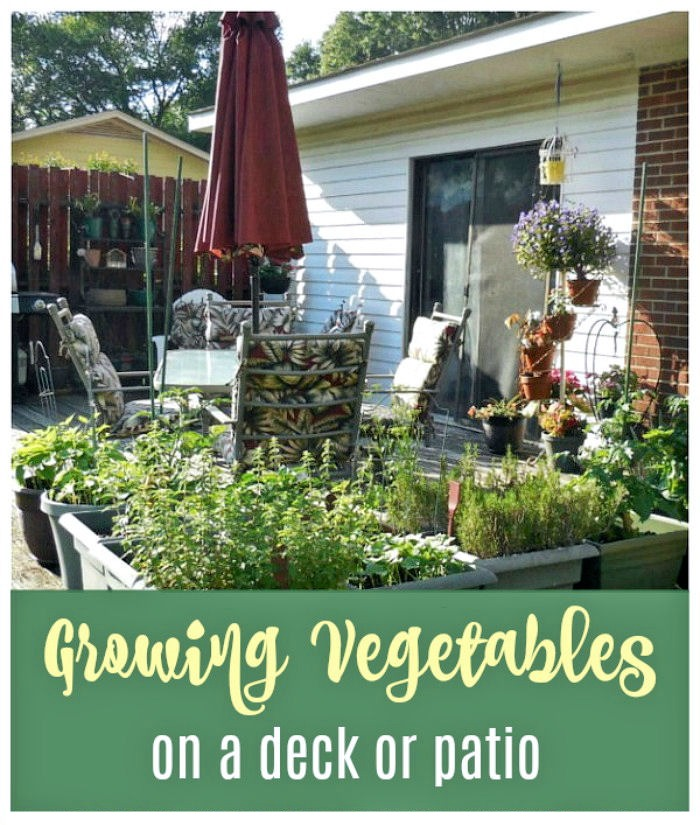 Growing vegetables on a deck