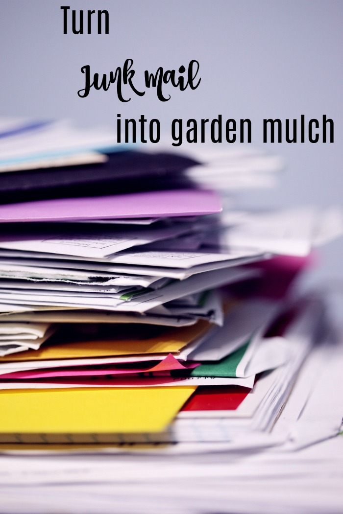 Turn junk mail into garden mulch