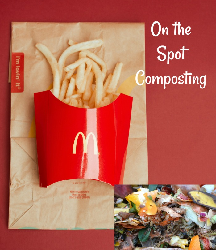 MacDonalds bag, french fries and kitchen scraps