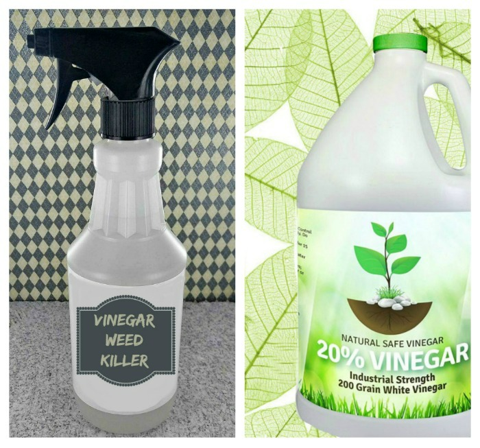 Veggie Garden Hacks - Make your own Organic vinegar weed killer