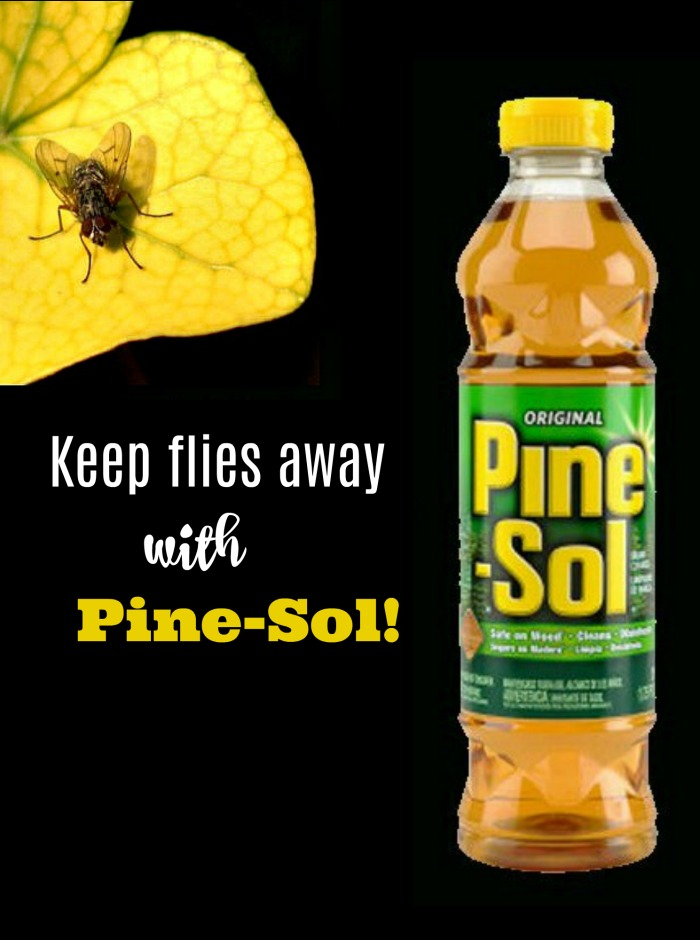 Keep flies away with Pine-Sol!