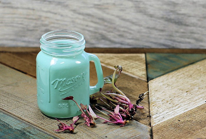 Small green Mason jar and a few sweet potato slips on a wooden counter.