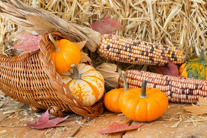 Cornucopia with pumpkins, leaves and Indian corn.
