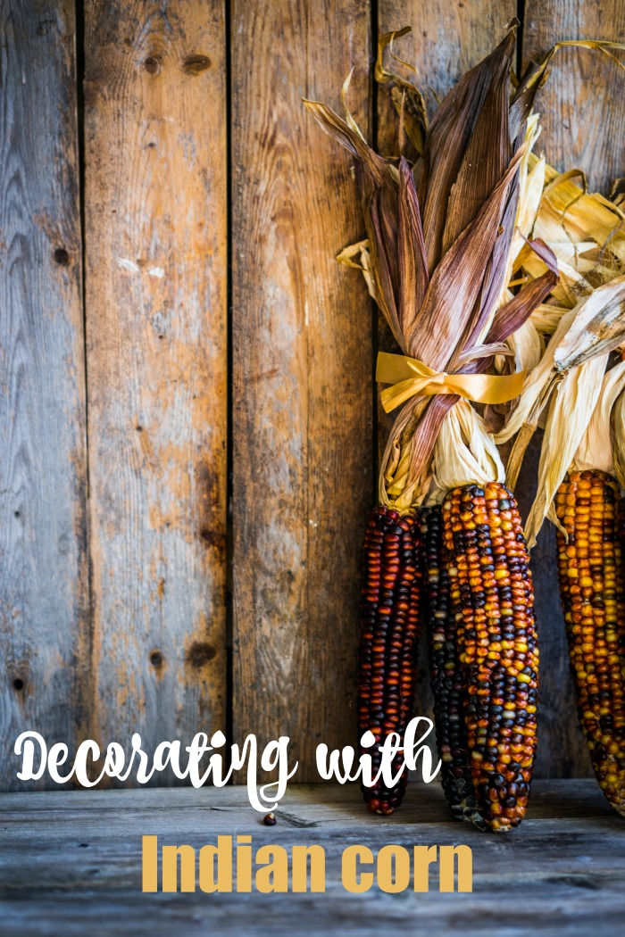 """Ears of Indian corn with a wood background and words reading """"decorating with Indian corn."""""""