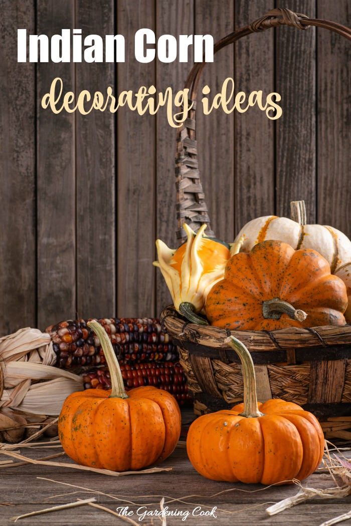 """Basket with pumpkins and ears of Indian corn with text reading """"Indian corn decorating ideas."""""""
