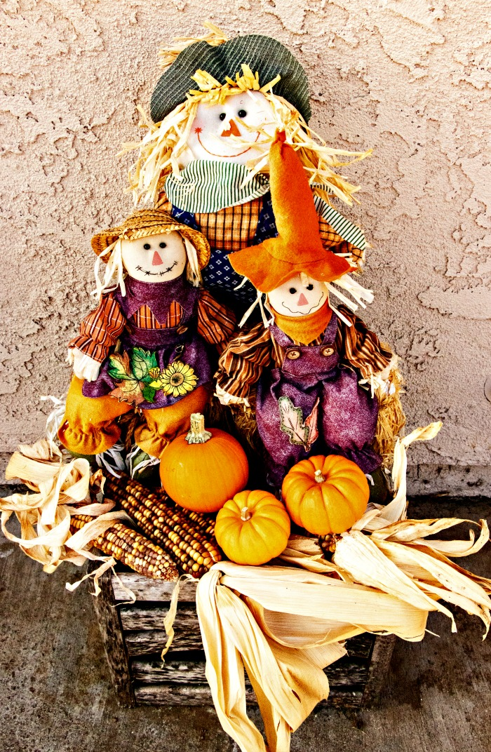 Scarecrow, pumpkins, Indian corn and basket.