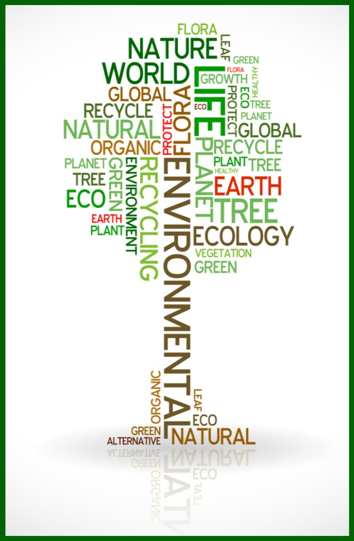 Graphic with eco-friendly words shaped like a tree.