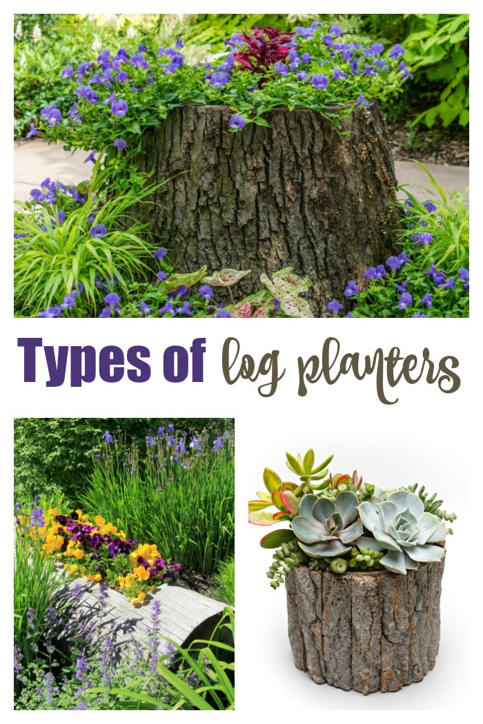 """Stump planter, trough planter and log pot in a collage with the words """"types of log planters."""""""