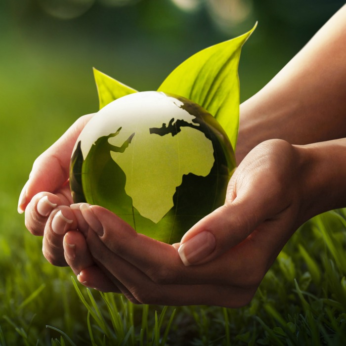 Hands holding a green earth.