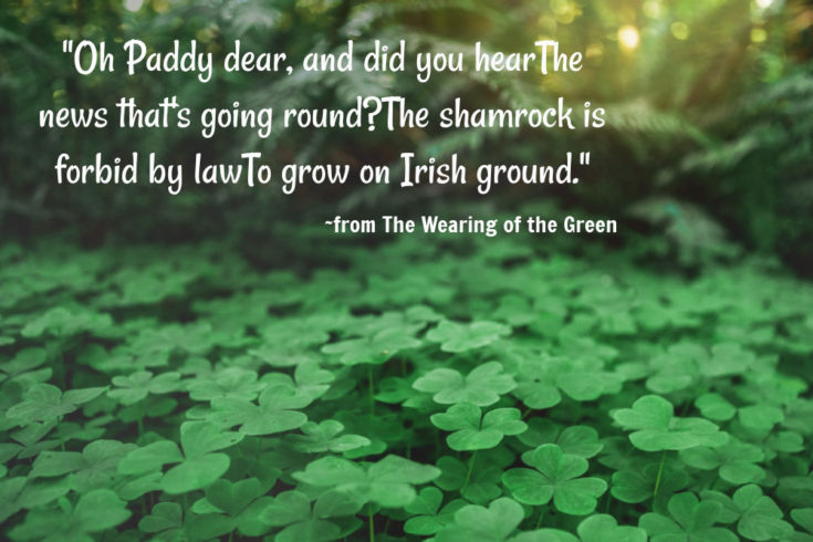 Shamrocks in a field with quote from The Wearing of the Green.