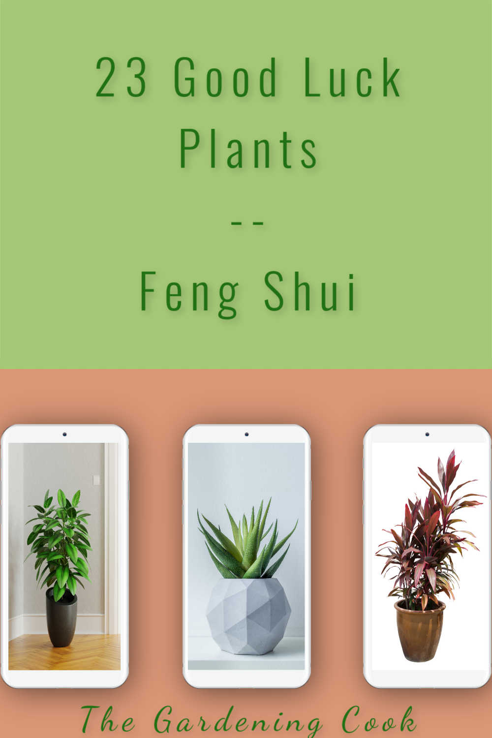Three phones with pictures of lucky plants with words reading 23 gook luck plants feng shui.