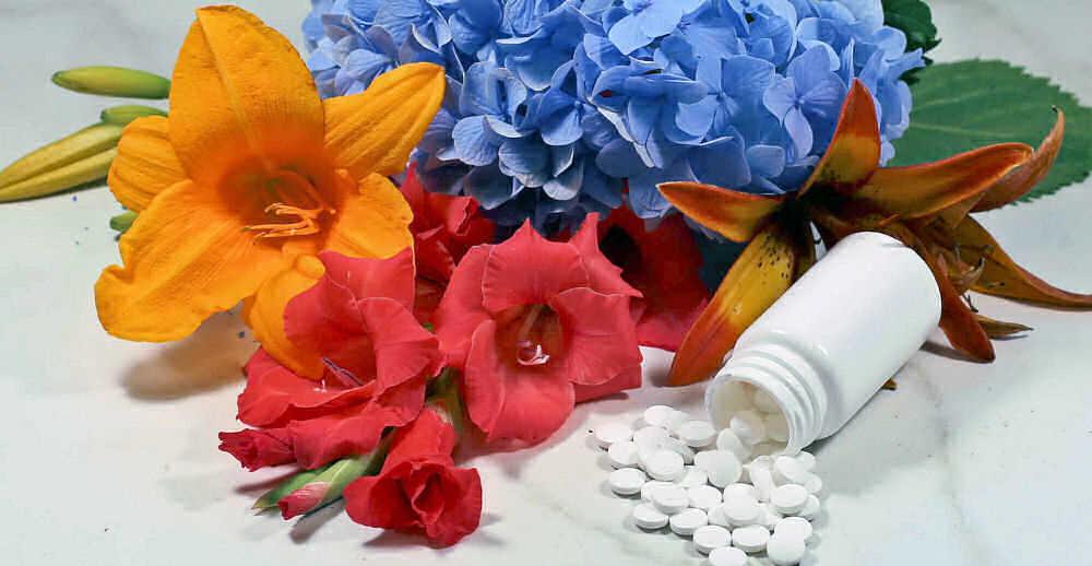 Bottle of aspirin surrounded by cut fresh flowers.