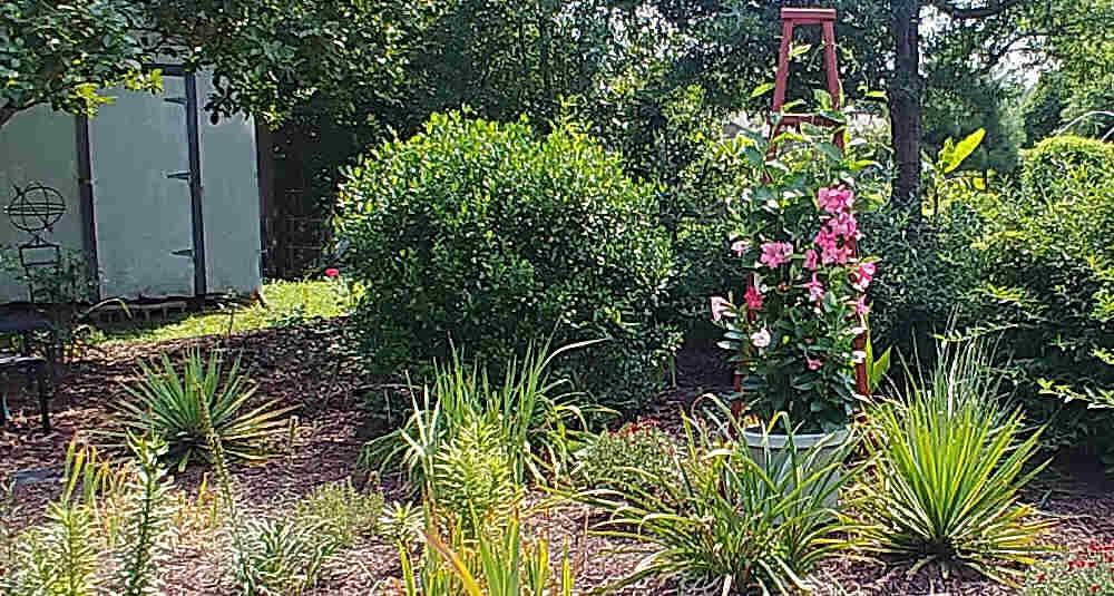Garden bed with a wooden obelisk.