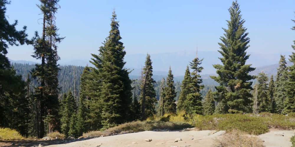 High elevation scenery shot in Sequoia National Park,