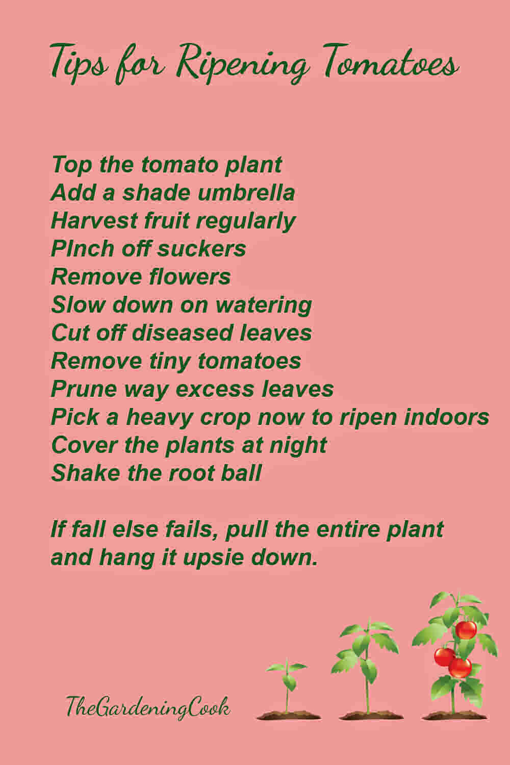 Printable with tips for ripening tomatoes on the vine.