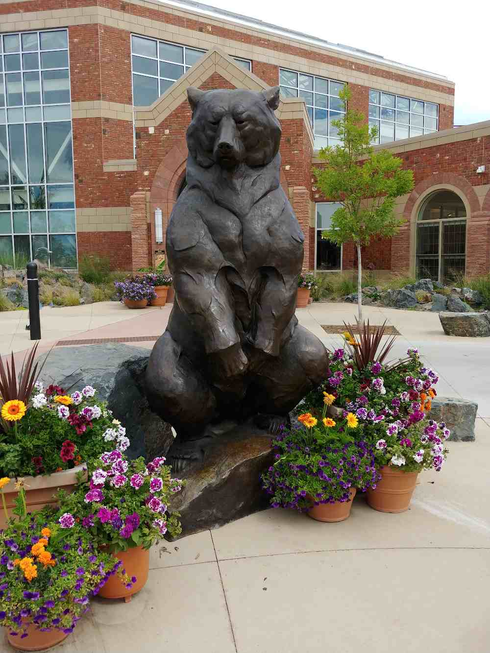 Bronze bear statue at Cheyenne Botanic Gardens.