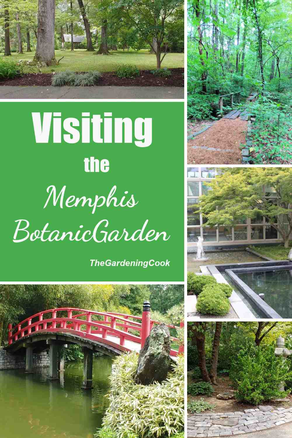 Pretty garden scenery in a post with words visiting the Memphis Botanic Garden.
