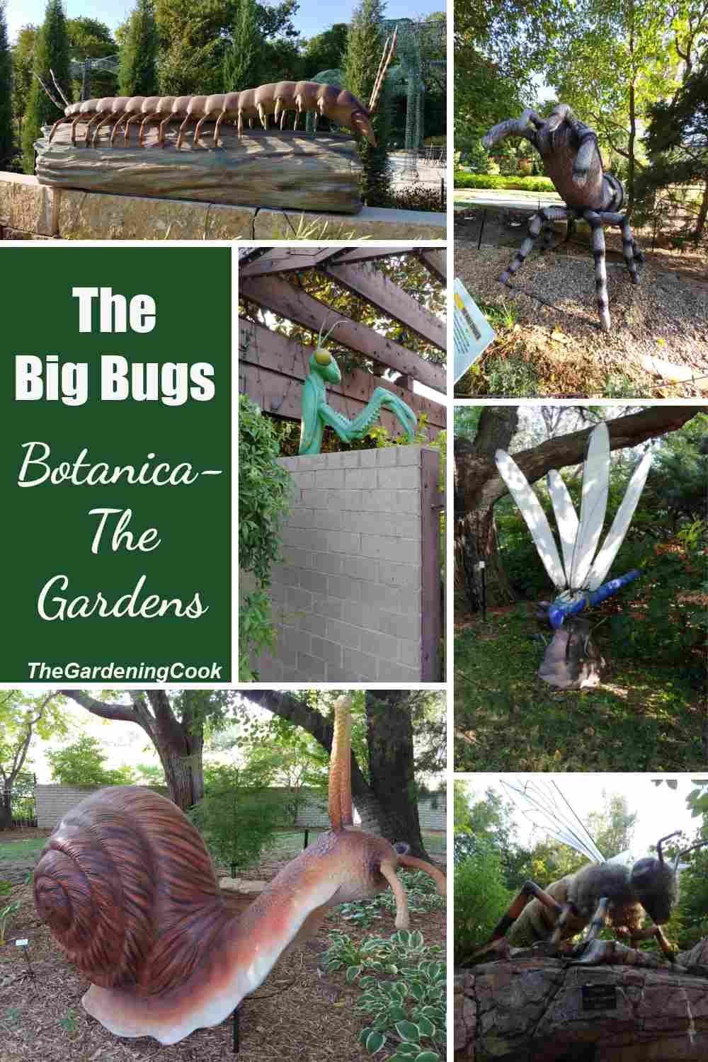 Giant bugs and insects in a collage with words The Big Bugs - Botanica The Wichita Gardens.