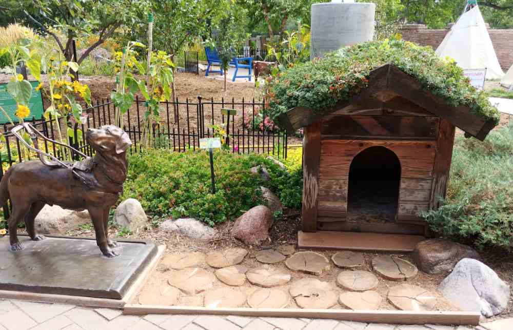 Bronze dog statue and doghouse with succulents on the roof.