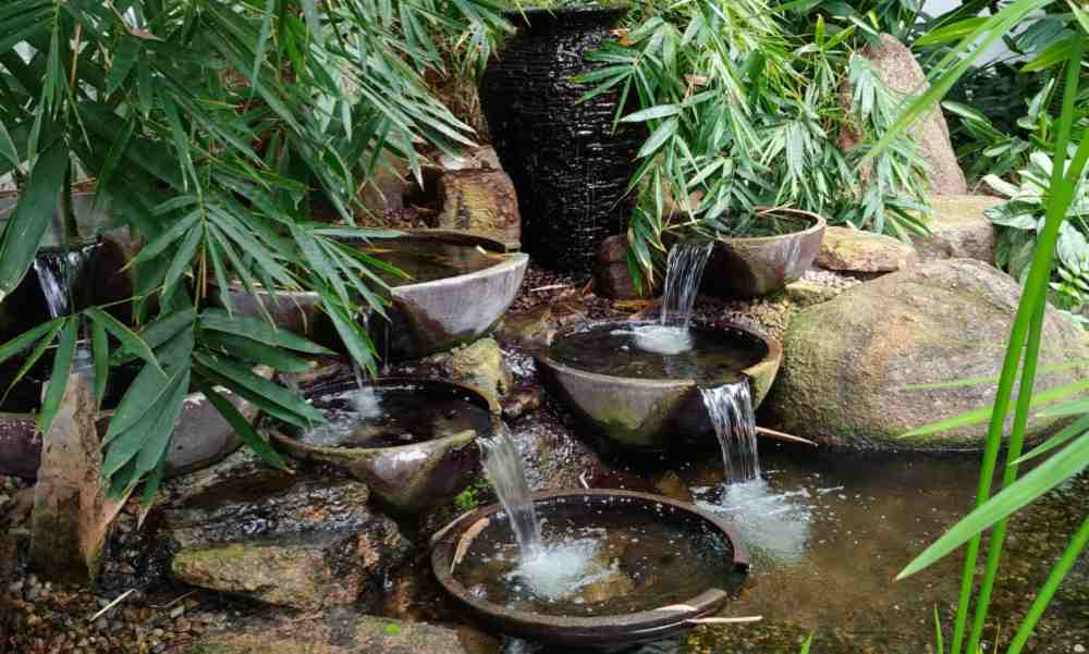 Water feature with tropical plants.