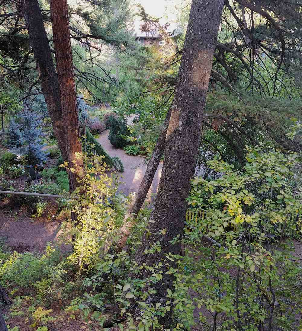 Scene from an observation deck overlooking Tizer Botanic Garden and Prickly Pear Creek.