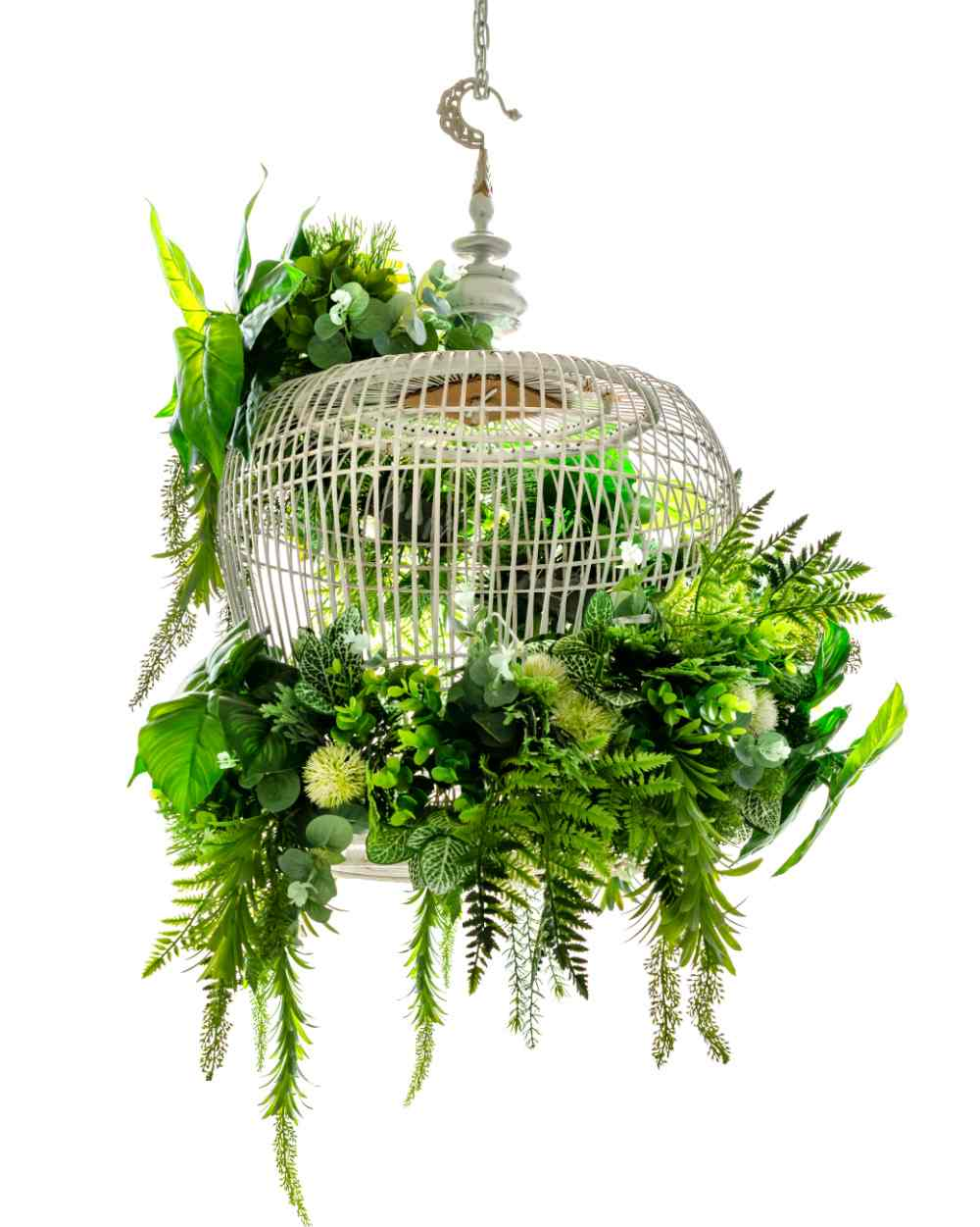 Bird cage planter with trailing leaves.