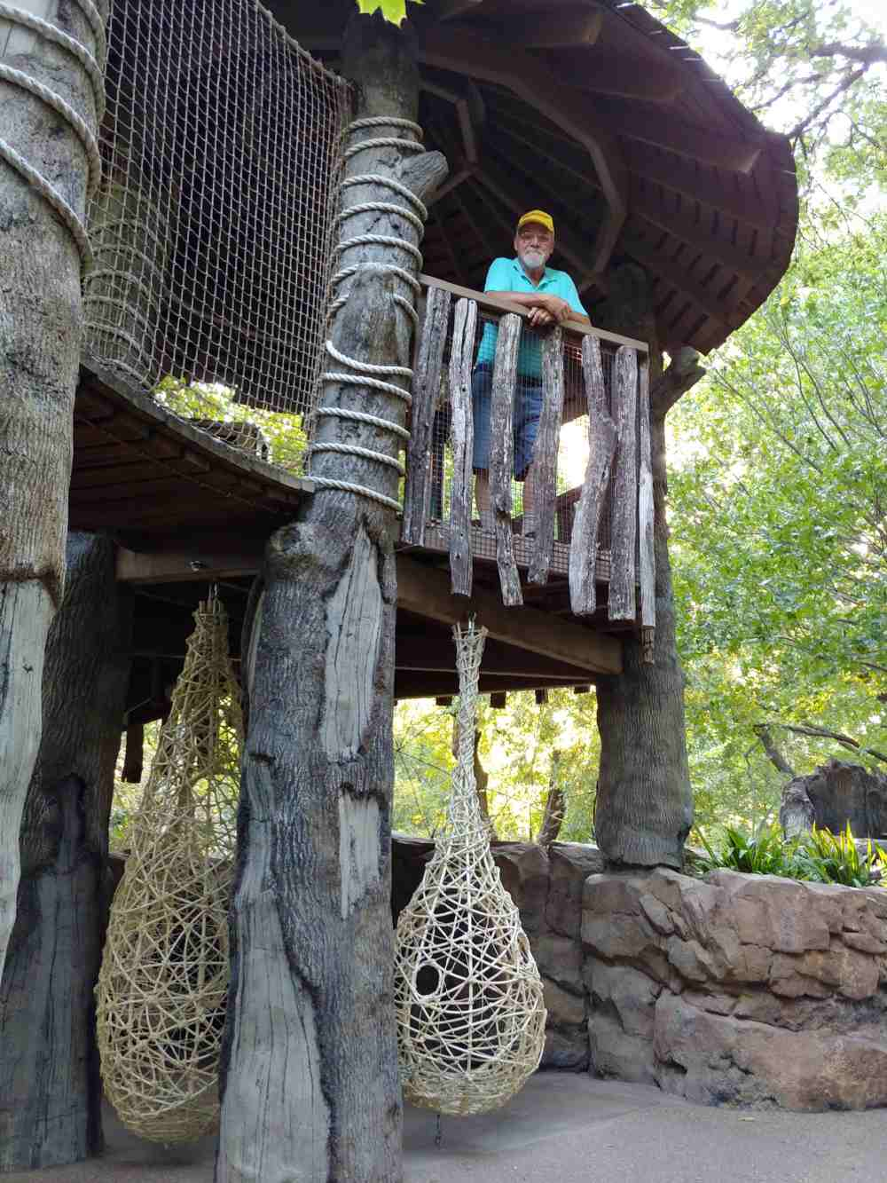 Man standing in a large treehouse.