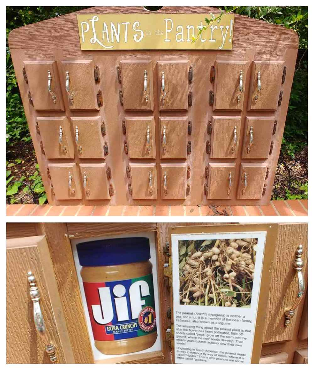 Wooden cabinet teaching exhibit.