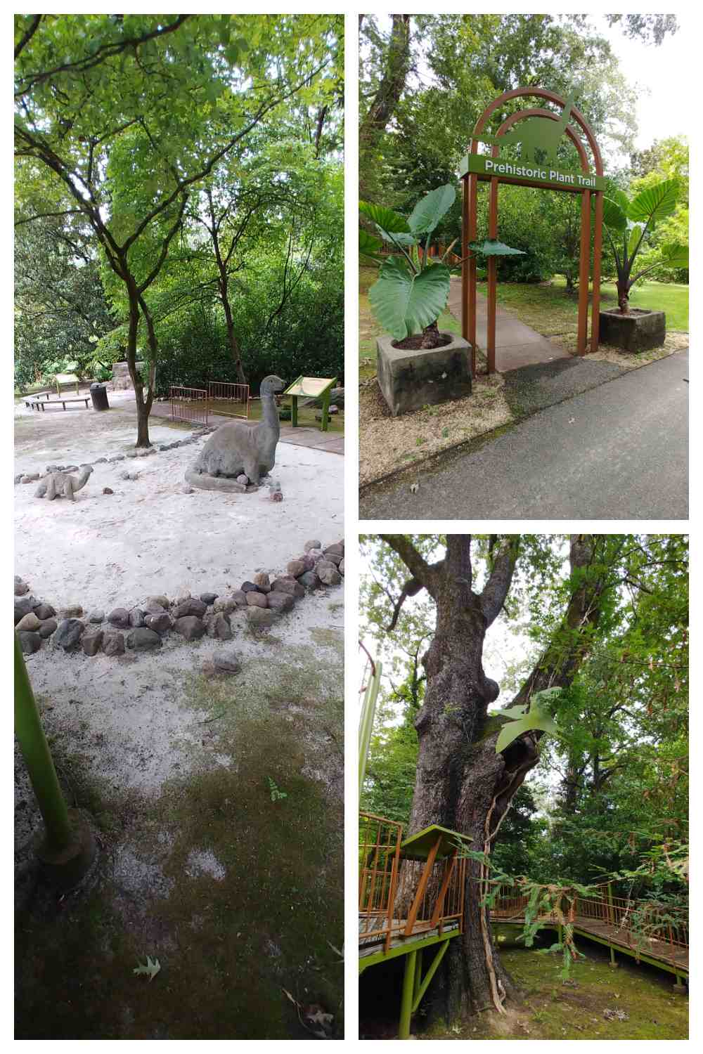 Dinosaur statues, entry arbor and tree in a collage.
