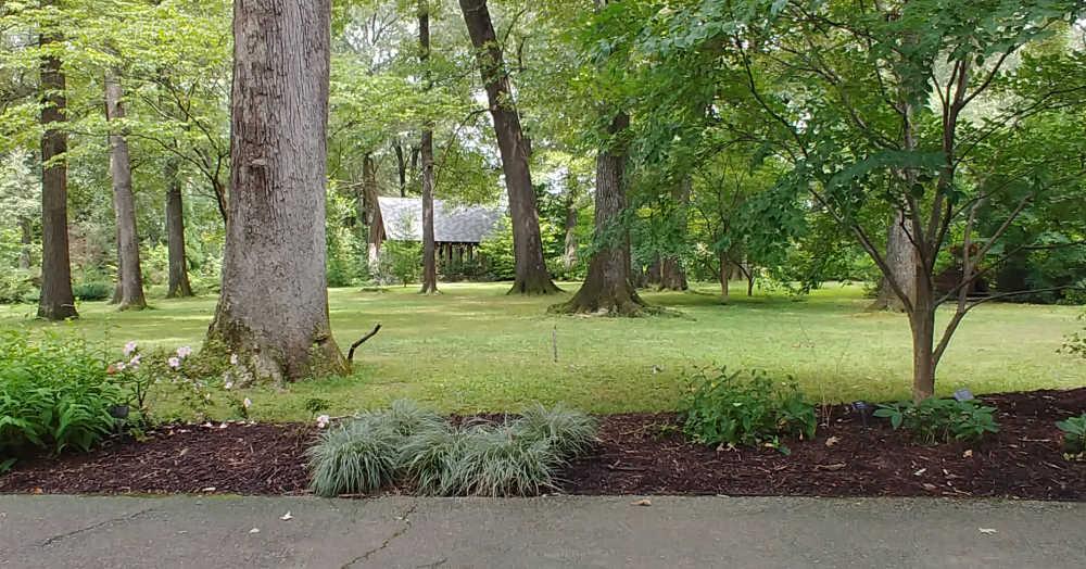 Walking trail in Memphis Botanic Garden.